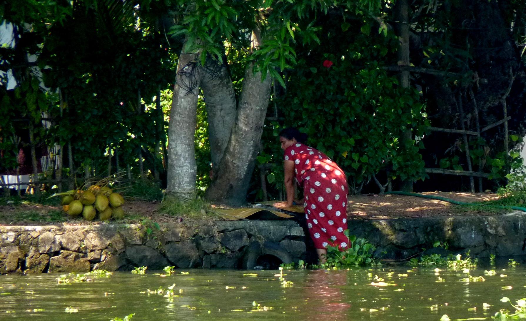 Explore la vida tradicional de la aldea de Kerala
