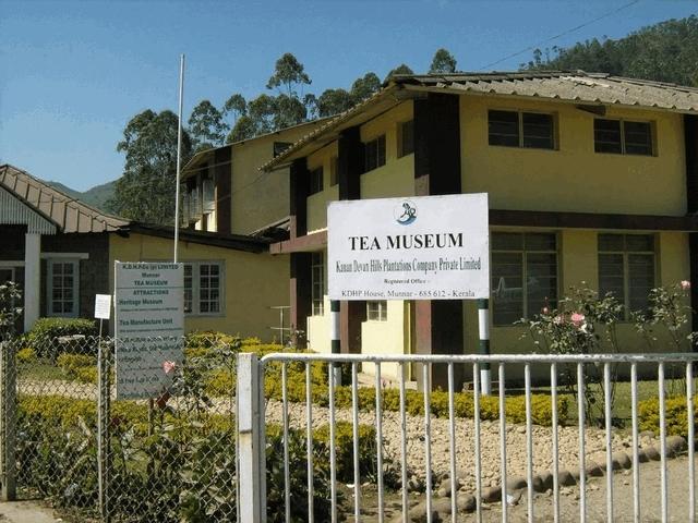 Té Museum