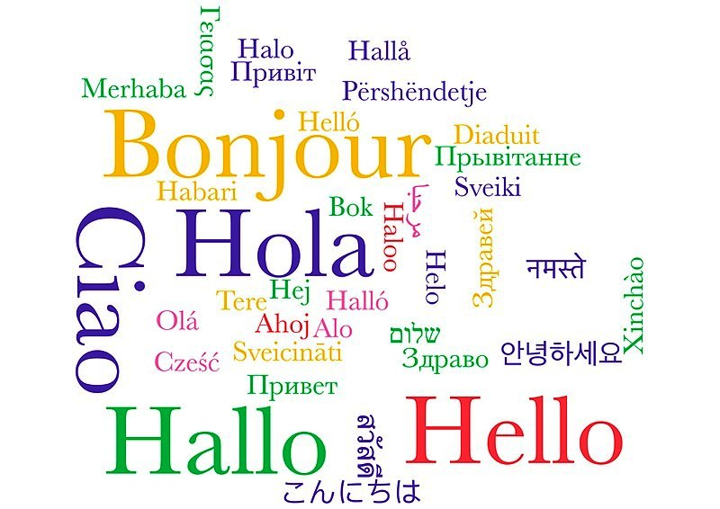 Lenguaje y frases útiles