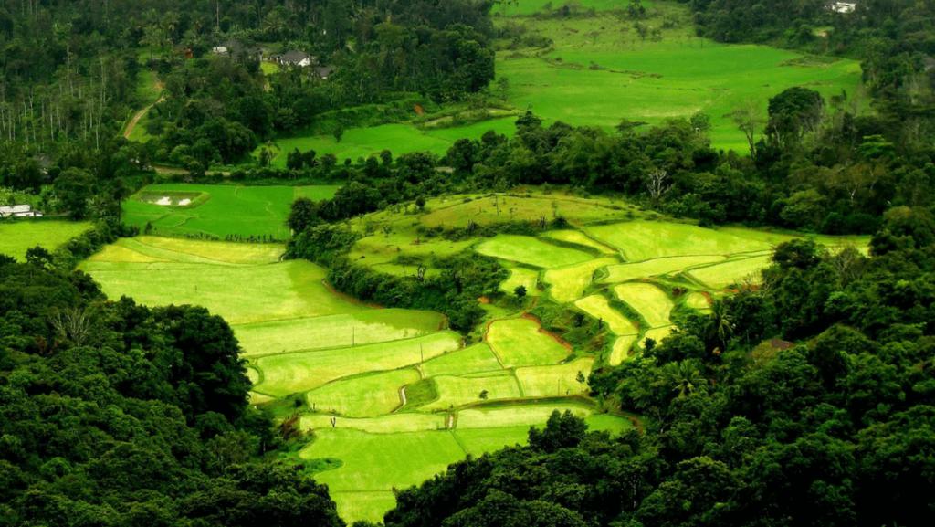 Estaciones de la colina en Kerala